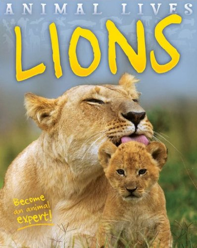 Animal Lives: Lions: Sally Morgan