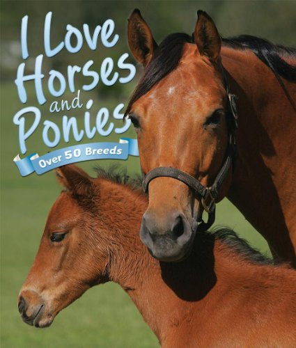 9781781715437: I Love: Horses and Ponies