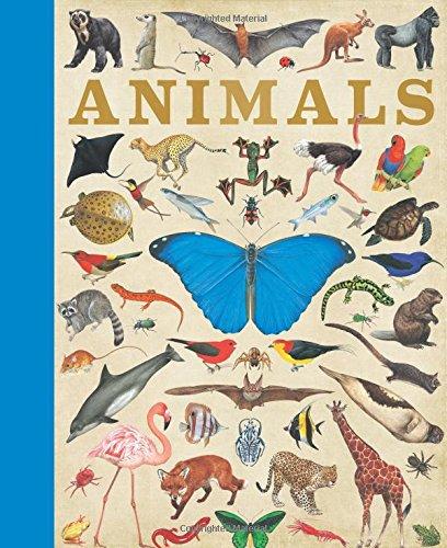 9781781719114: Animals