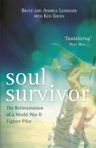 9781781808061: Soul Survivor: The Reincarnation of a World War II Fighter Pilot