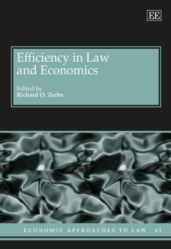 Efficiency in Law and Economics (Hardback)
