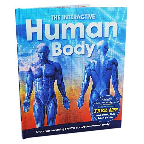 9781781975930: Human Body (Factopedia 176)