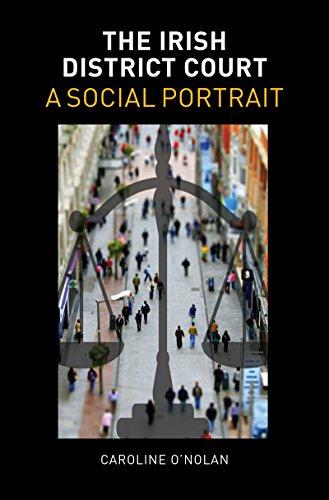 9781782050483: The Irish District Court: A Social Portrait