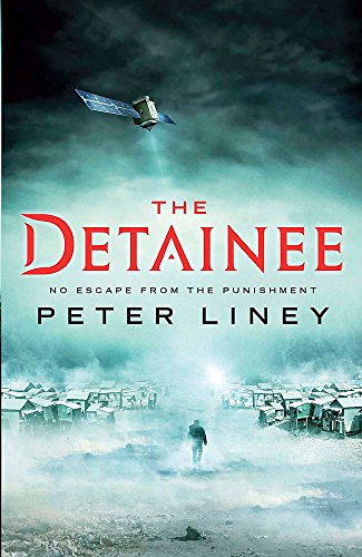 9781782060352: The Detainee