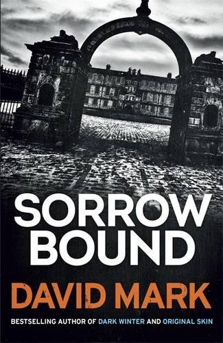 9781782063148: Sorrow Bound (DS Aector McAvoy)