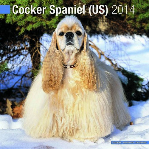9781782080374: Cocker Spaniel (US) 2014
