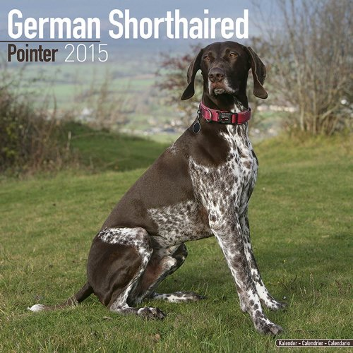 9781782081920: German Shorthaired Pointer Calendar - Breed Specific German Shorthaired Pointer Calendar - 2015 Wall calendars - Dog Calendars - Monthly Wall Calendar by Avonside