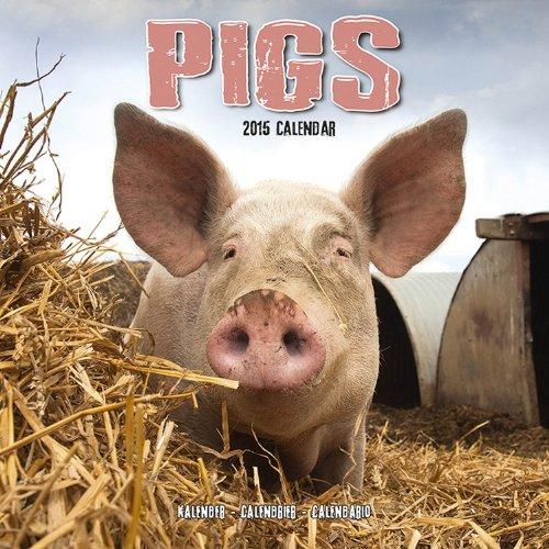 9781782082996: Pigs 2015