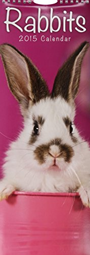 9781782083887: Rabbits (Slim) 2015 (Slim Standard)