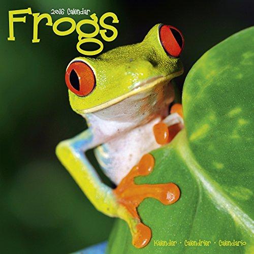 9781782084501: Frogs Calendar - 2016 Wall calendars - Animal Calendar - Monthly Wall Calendar by Avonside