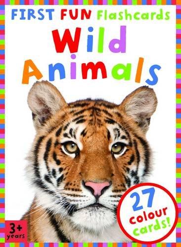 9781782091196: First Fun Flashcards Animals