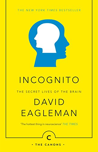 9781782112464: Incognito: The Secret Lives of the Brain
