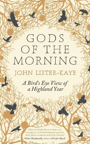 9781782114154: Gods of the Morning: A Bird's Eye View of a Highland Year