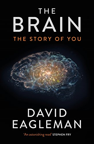 9781782116585: The Brain: The Story of You