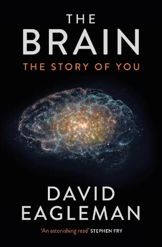 9781782116608: The Brain: The Story of You