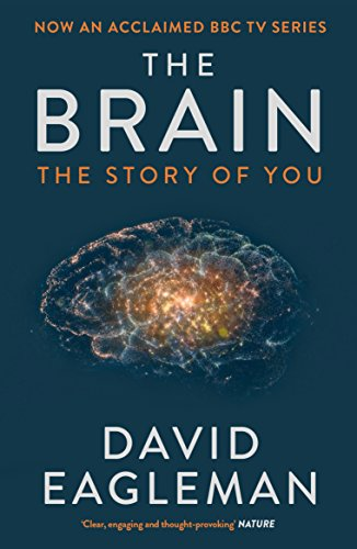 9781782116615: The Brain: The Story of You