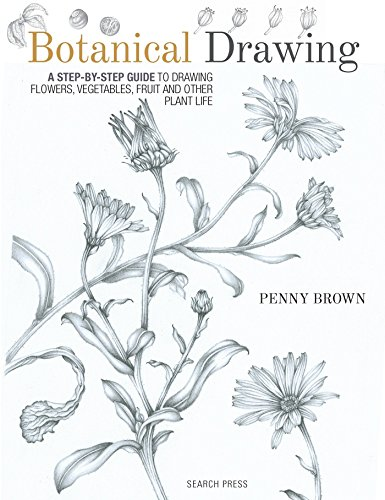 9781782212607: Botanical Drawing: A Step-by-Step Guide to Drawing Flowers, Vegetables, Fruit and other Plant Life