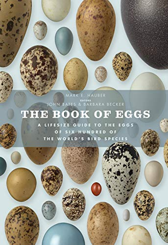 9781782400479: The Book of Eggs: A Lifesize Guide to the Eggs of Six Hundred of the World's Bird Species (Book Of Series)
