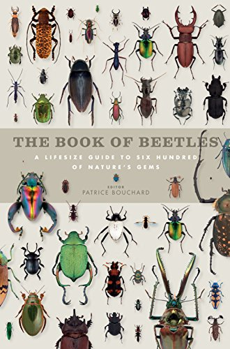 9781782400493: Book of Beetles: A Life-Size Guide to Six Hundred of Nature's Gems (Book of Series)