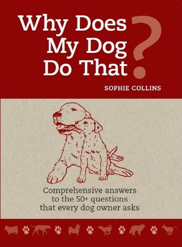 Why Does My Dog Do That?: Sophie Collins