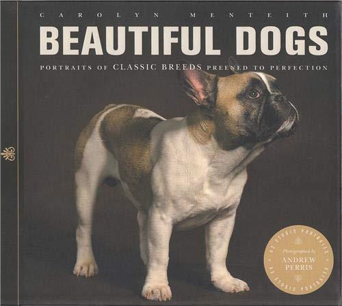 9781782400752: Beautiful Dogs
