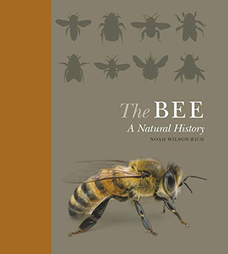 9781782401070: The Bee a Natural History /Anglais