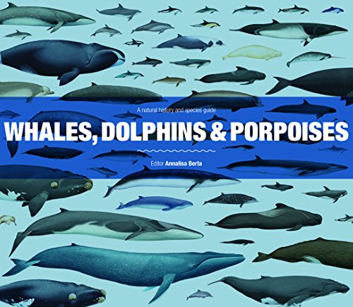 9781782401520: Whales, Dolphins and Porpoises: A natural history and species guide