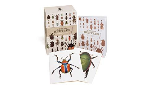 9781782402381: A Box of Beetles: 100 Beautiful Postcards