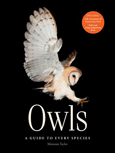 9781782404040: Owls: A guide to every species
