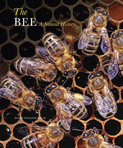 THE BEE: WILSON RICH N.