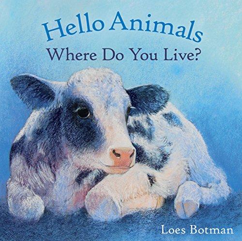 9781782502197: Hello Animals, Where Do You Live?