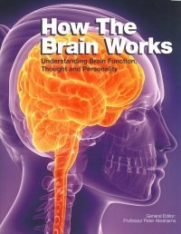 9781782742531: How The Brain Works