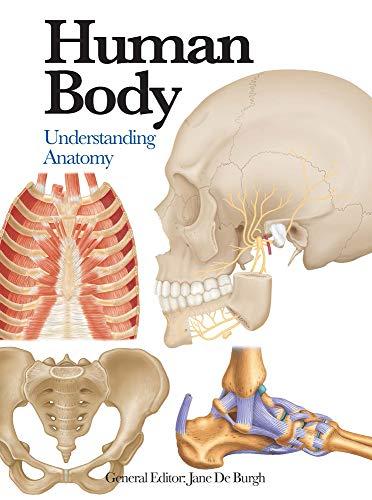 9781782743774: Human Body: Understanding Anatomy