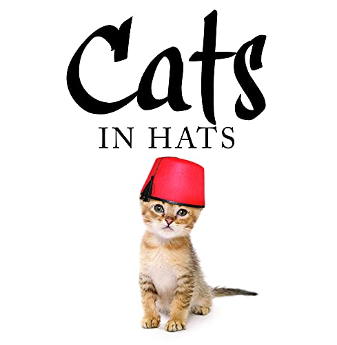 Cats in Hats: Kat Scratching