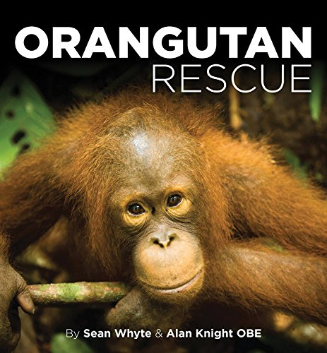 9781782815358: Orangutan Rescue