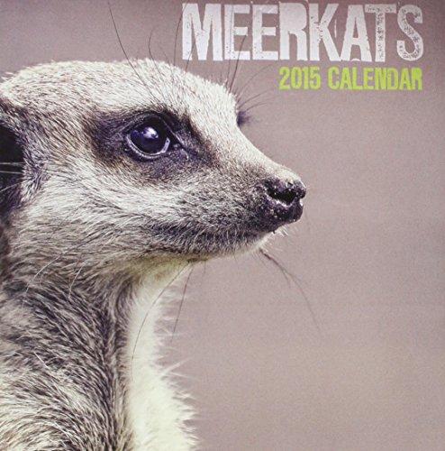 9781782934691: Meerkats Easel: Desk Calendar
