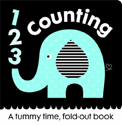 9781782960591: First Focus Frieze Counting