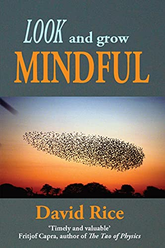 9781782999553: Look and Grow Mindful