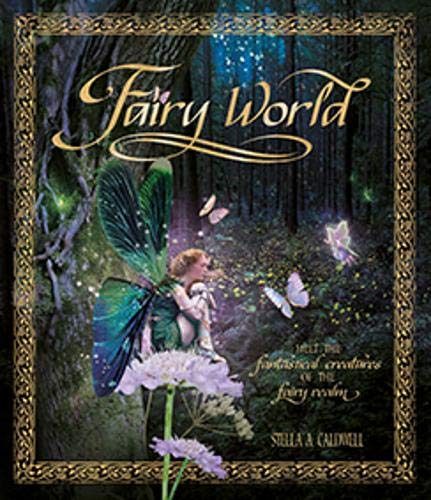 9781783121823: Fairyworld: Enter the Magical and Mysterious Realm