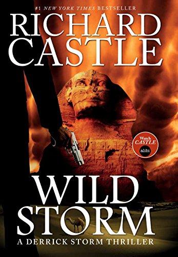 9781783294305: Wild Storm (a Derrick Storm Novel) (Castle)
