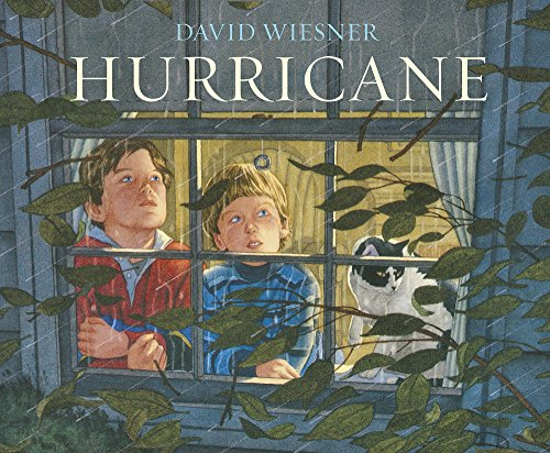 9781783445776: Hurricane