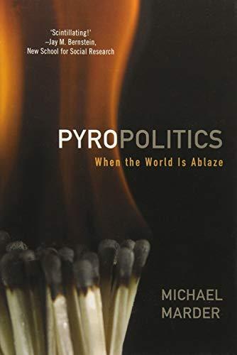 9781783480289: Pyropolitics: When the World is Ablaze