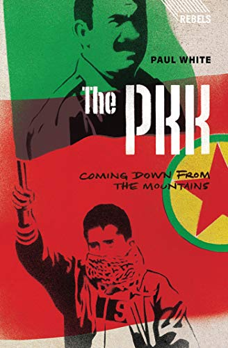 9781783600380: The PKK: Coming Down from the Mountains (Rebels)