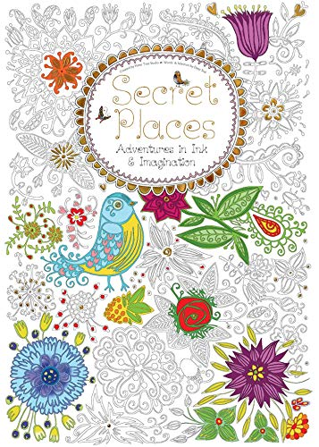 9781783617036: Secret Places: Adventures in Ink and Imagination (Colouring Books)