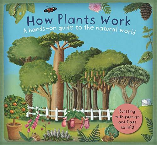 9781783703722: How Plants Work