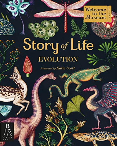 9781783704446: Story of Life: Evolution (Welcome To The Museum)