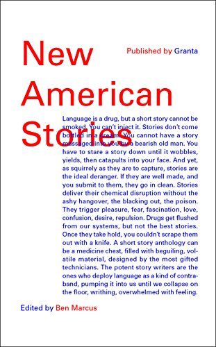 9781783781478: New American Stories