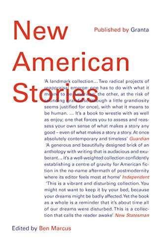 9781783781485: New American Stories