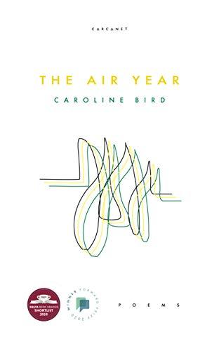 9781784109028: The Air Year