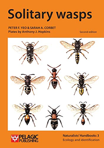 9781784270339: Solitary Wasps (Naturalists' Handbooks)